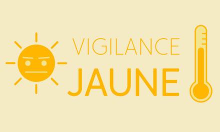 Haut-Rhin – Canicule : Vigilance Jaune – 1er Juillet 2019