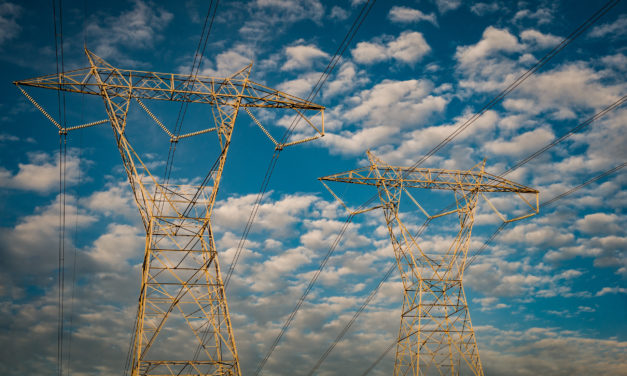 Entretien des lignes électriques du 1er Février au 31 décembre 2020